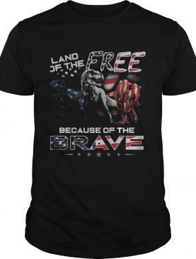 Land if the free because of the brave American flag veteran Independence Day shirt