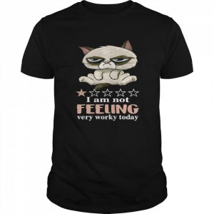 Cat Grumpy I Am Not Feeling Very Worky Today  Classic Men's T-shirt